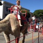 LBA To Keep Petting Zoo and Camel Rides at Family Fair