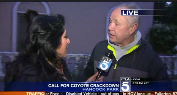 Local KTLA Reporter Lynette Romero Discusses Coyote