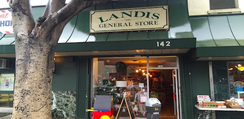 Landis General Store - with its original sign - is back on the block.